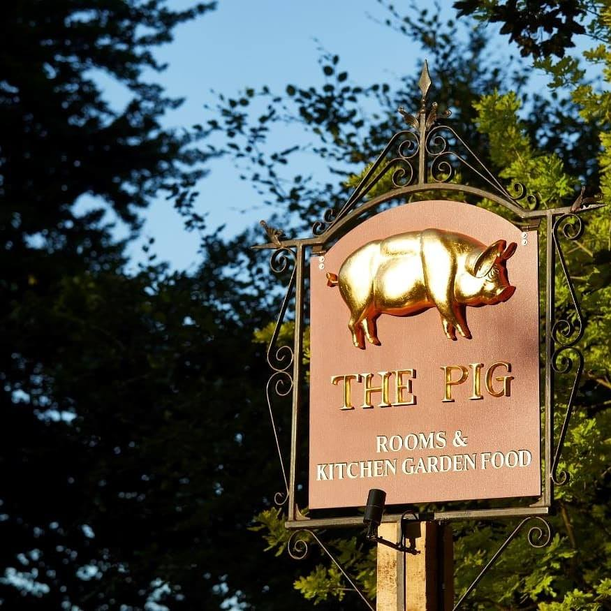 The Pig 1